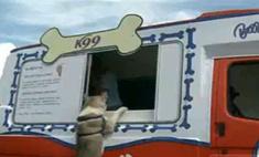 Мороженое для собак появилось в Лондоне