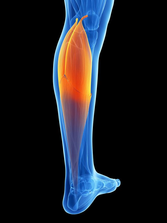 похудеть в икрах ног