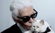 Лагерфельд выпустил коллекцию в честь своей кошки