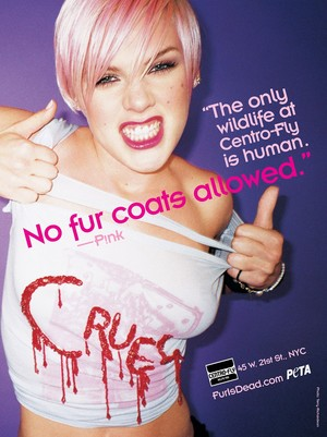 Пинк снялась в рекламе по защите прав животных