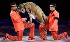 Запашные: «Будем самыми богатыми циркачами в мире»