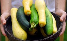 Топ-7 простых и вкусных блюд из кабачков