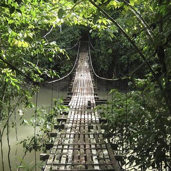 Этот мост в костра-риканской бухте Дрейка не выглядит опасным, однако заготовьте на всякий случай вопль ужаса: внизу, в тихой воде притаились крокодилы, которые не будут против, если добыча вдруг упадет к ним с моста.