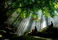 В сердце буддизма