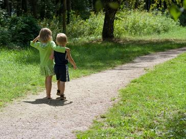 Прогулка делает людей умнее