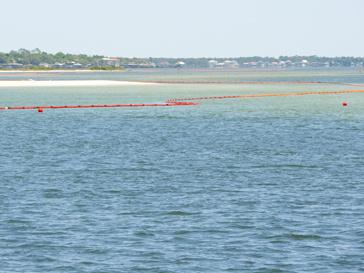 Очищение береговой линии
