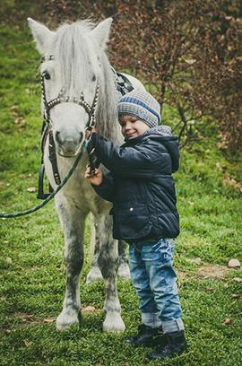 «Дом белой лошади»