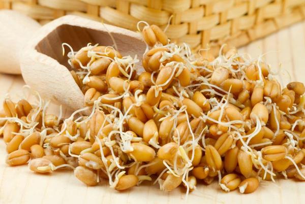 Пророщенная пшеница польза сколько нужно употреблять