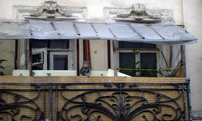 Спецтема отжурнала «Большой город» «Балконный», автор Станислав Roamer