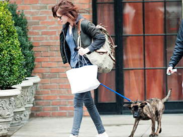 Кристен Стюарт (Kristen Stewart) взяла на себя заботу о собаке Роберта Паттинсона