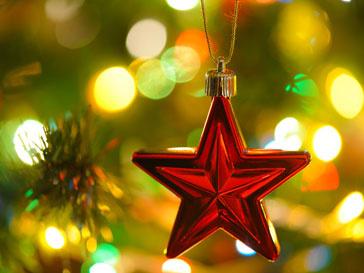В Москву доставили новогоднюю елку