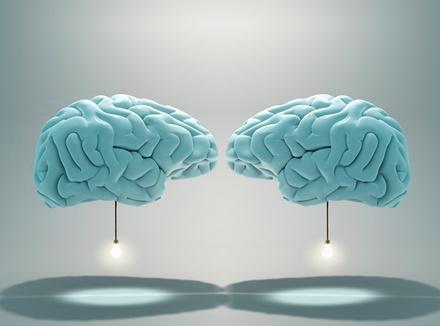 Два мозга