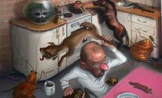 забавные халявщики животных сделали ставку человека прогадали