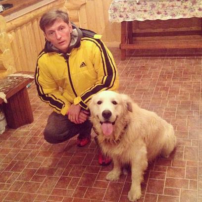 Павел Воля нашел собаку