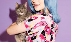 Кошка стала звездой рекламы одежды