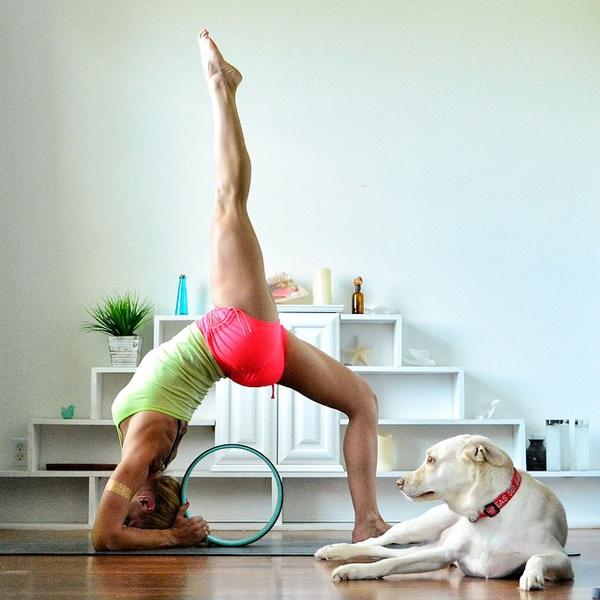 ВСТАЛА В ПОЗУ: 7 мотивирующих йога-аккаунтов | галерея [2] фото [2]
