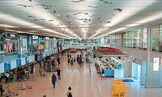 Швейцарская компания выставит на аукцион забытые в аэропорту вещи