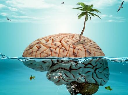 Метафора острова: как перестать доказывать людям, что они были неправы