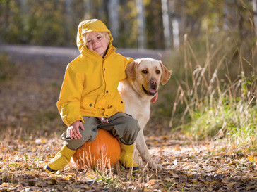 собака, школа, успеваемость