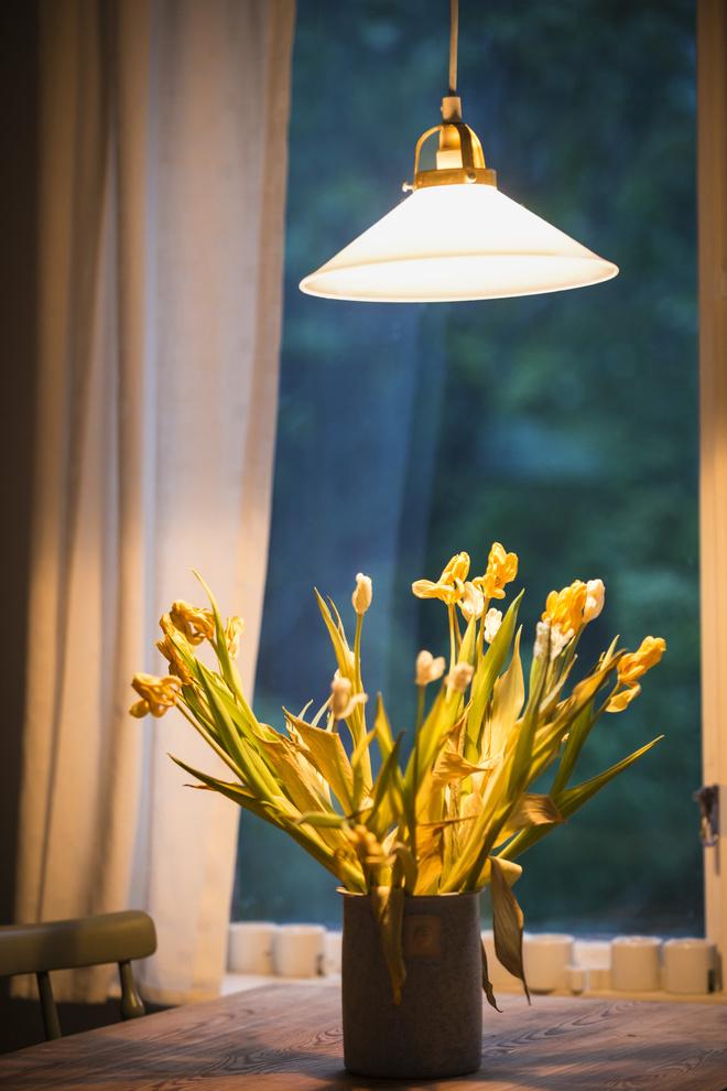 Лампа для цветов