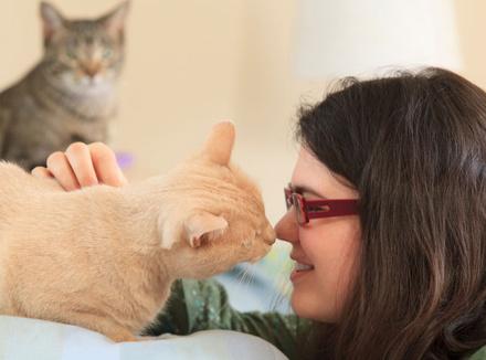 Девочка с аутизмом играет со своей кошкой