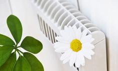 Повышаем уровень влажности воздуха: проверенные способы