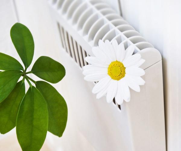 Как повысить влажность воздуха? Видео