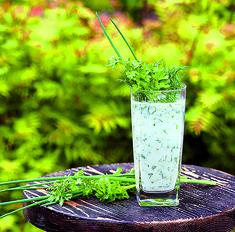 Освежающий кефир с зеленью