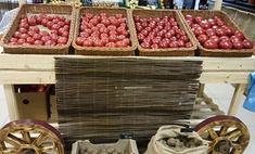 Правильное питание: где в Краснодаре заказать на дом натуральные продукты
