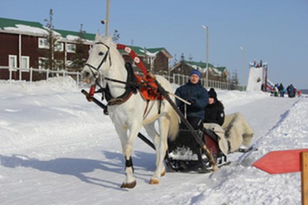 "База отдыха ""Белая лошадь"", фото"