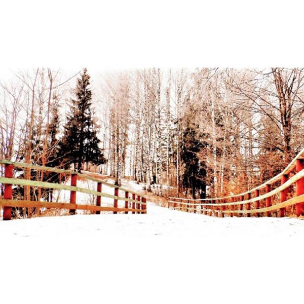 Зима 2016: завораживающие фото природы