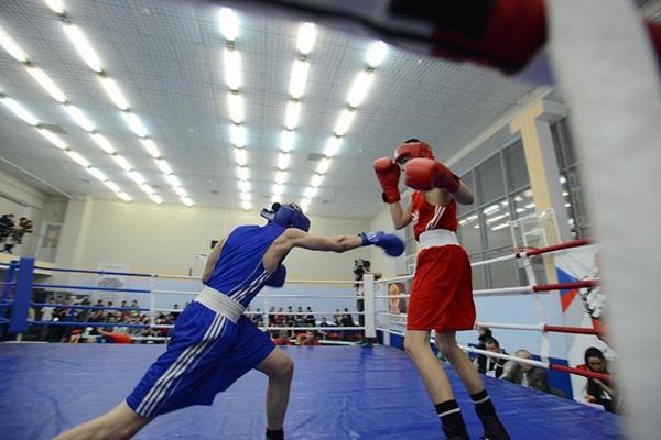 бокс, школа бокса
