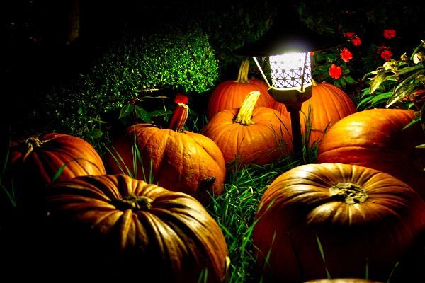 Ставрополь, «Триумф», Хеллоуин