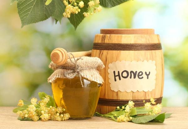 Липовый мед польза