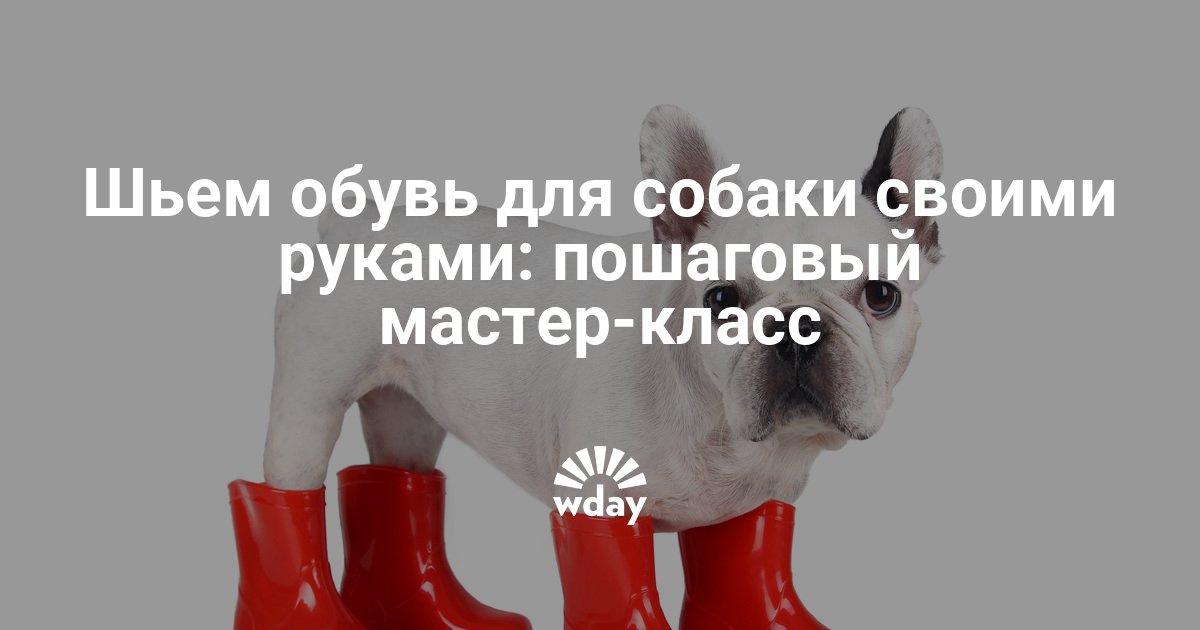 Как сшить обувь для собак своими руками - Woman s Day 5323e46637f