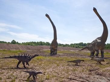 Динозавры жили 65 миллионов лет назад