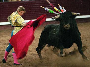 коррида, традиция, Испания, Барселона