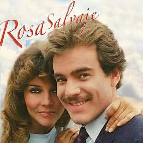 Кадр из сериала «Дикая Роза» с Вероникой Кастро
