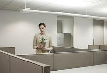 Проблемы на работе: ключ – в семейной истории?