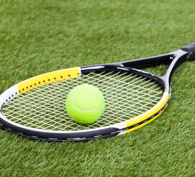 спорт, теннис