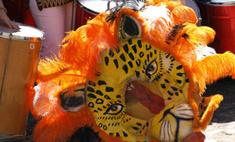 Во время карнавала в Бразилии погибли 16 человек