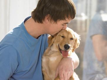 любовь, собака, курьезы