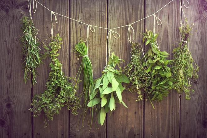 травы и их сочетания - чем заменить орегано в кулинарии