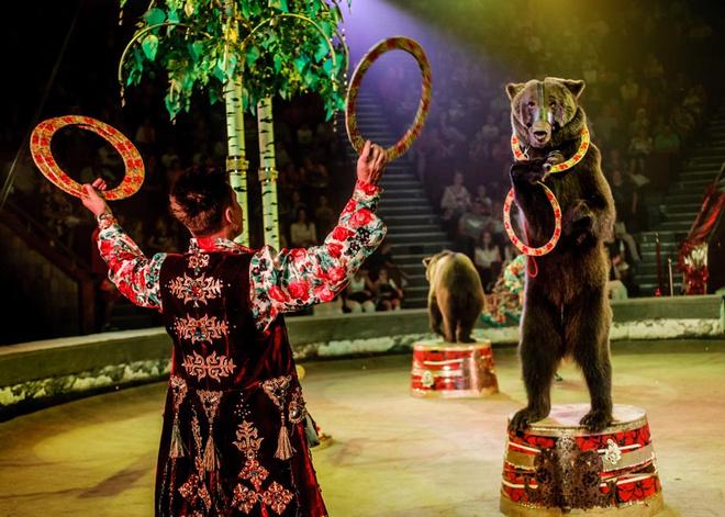 цирк Гии Эрадзе