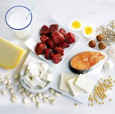 Помогут ли белковые блюда похудеть. Диеты