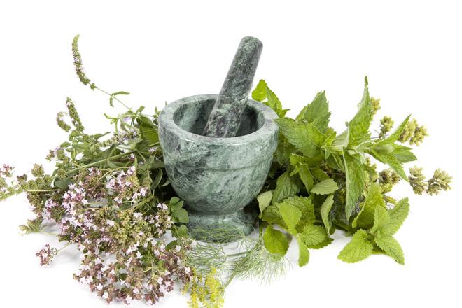 травы для восстановления печени