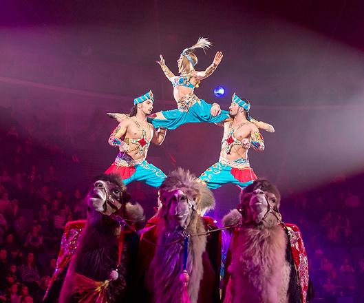 "Екатеринбургский цирк, шоу ""Баронеты"", фото"