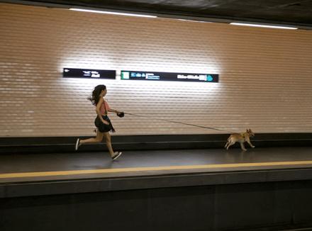 Бегущая девушка с собакой