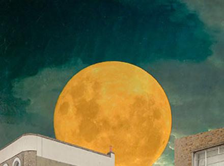 Меня ослепляет яркий свет луны