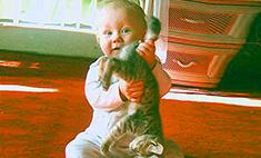 Собачки, кошки, детки – как ужиться вместе? 11 советов ветврача